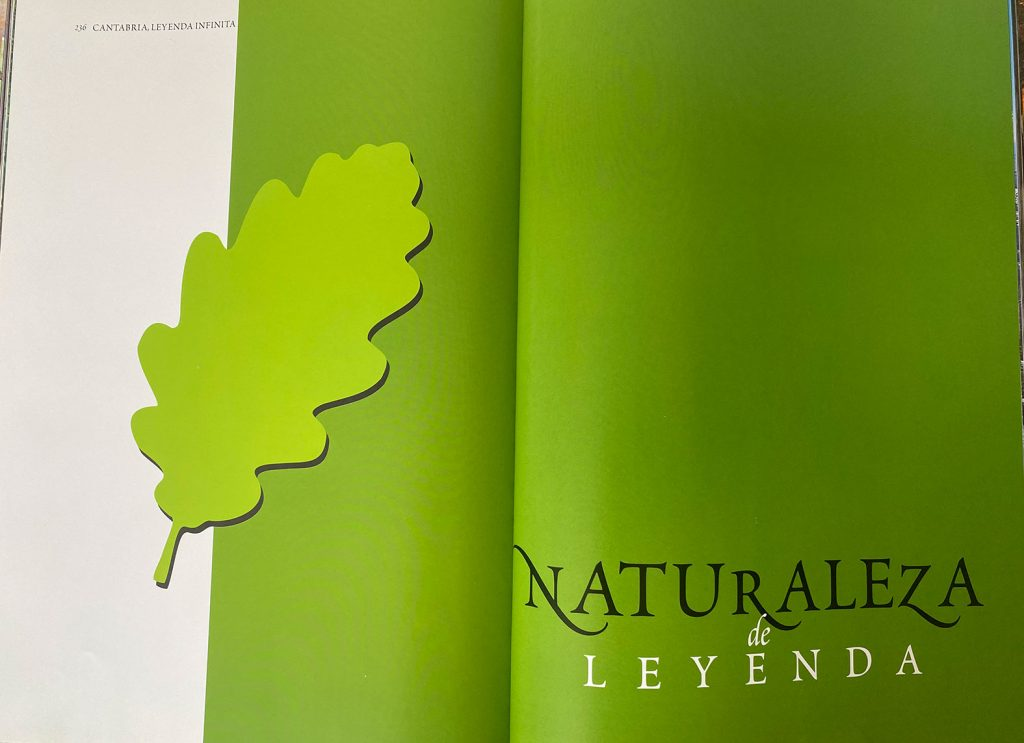 diseño de libro de naturaleza